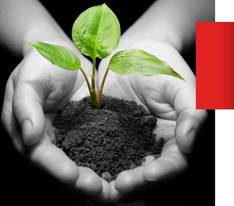 LGT Zrównoważony rozwój